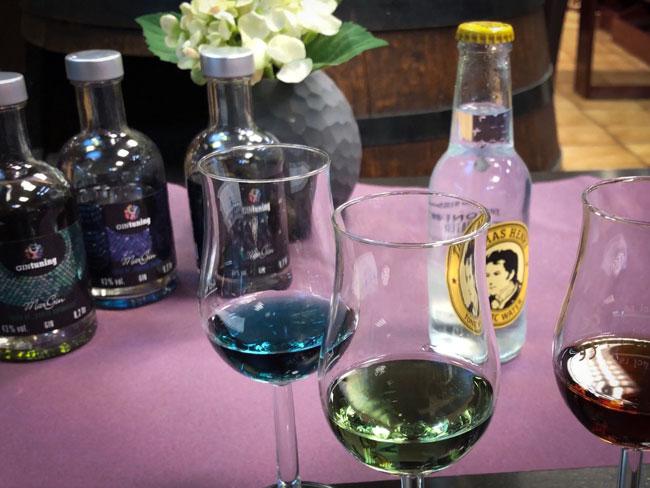 Gin Hildesheim kaufen - Gin Tasting